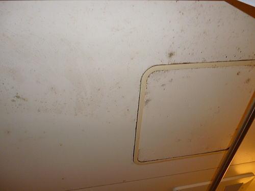浴室天井リフォーム施工前